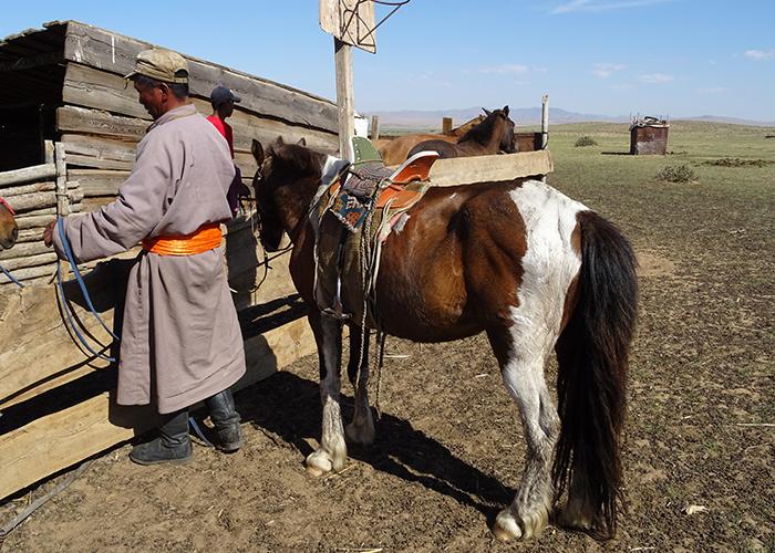 Mongolie 700×500 (10)