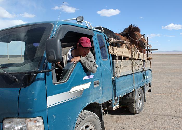 Mongolie 700×500 (43)