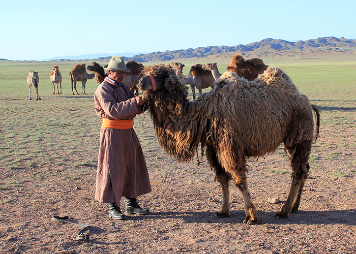 Mongolie 700×500 (61)