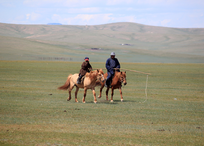 Mongolie 700×500 (66)
