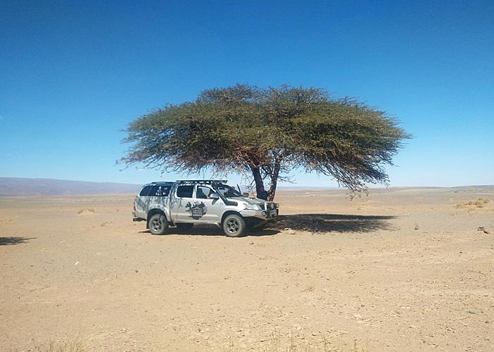 maroc 700×500 (133)